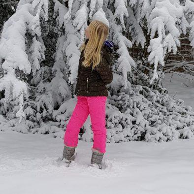 Winter impressie tuin